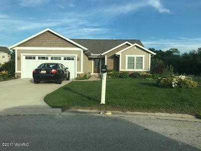 Muskegon County, Newaygo County, Oceana County, Ottawa County Single Family Home For Sale: 5540 Lister Court