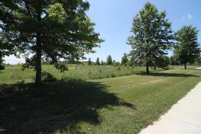 Three Oaks Residential Lots & Land For Sale: 401 W Locust Street