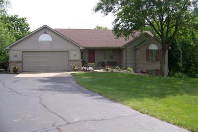 Rockford Single Family Home For Sale: 8700 Oakbrook Ridge Drive