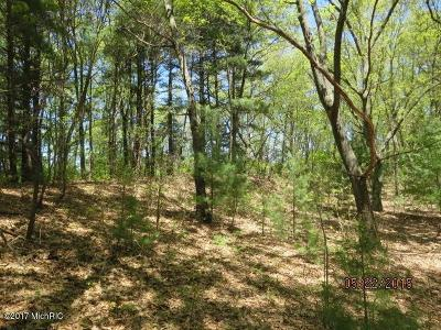 Saugatuck, Douglas Residential Lots & Land For Sale: 6331 Silver Lake Drive #2