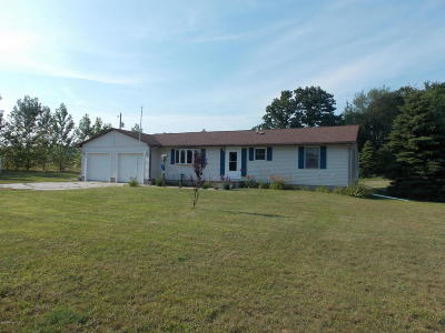 Rothbury Single Family Home For Sale: 712 E Arthur Road