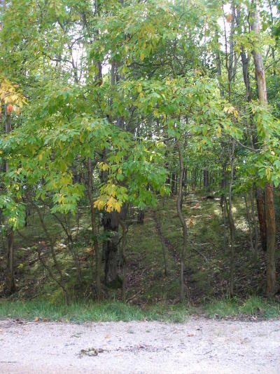Canadian Lakes Residential Lots & Land For Sale: 9600 Golf Port Drive