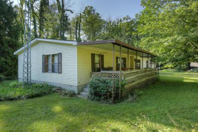 Newaygo Single Family Home For Sale: 1001 E Elm Street