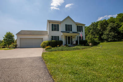 Edwardsburg Single Family Home For Sale: 67236 Hess Road