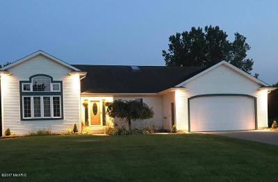 Dorr Single Family Home For Sale: 4161 Kellamie Street