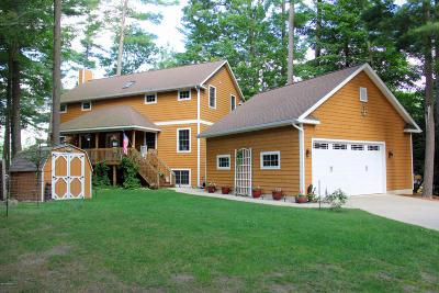 Newaygo Single Family Home For Sale: 6832 E Carrigan