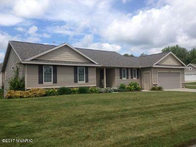 Byron Center Single Family Home For Sale: 8955 Old Brower Road SW