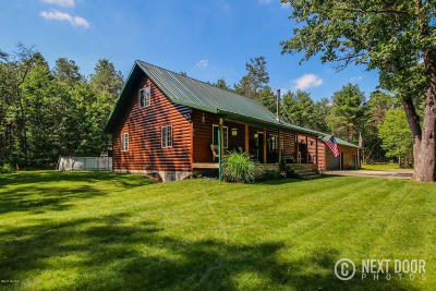 Newaygo County Single Family Home For Sale: 3385 S Locust Avenue