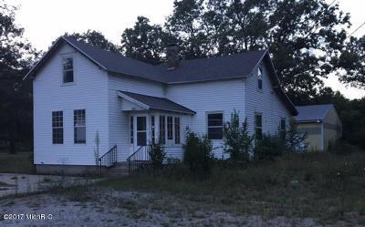 Muskegon Single Family Home For Sale: 6016 E Apple Avenue
