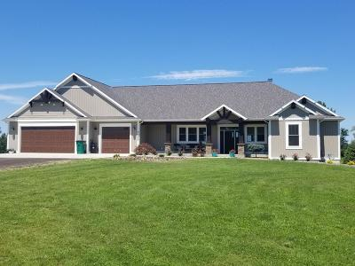 Byron Center Single Family Home For Sale: 3033 Farmview Lane