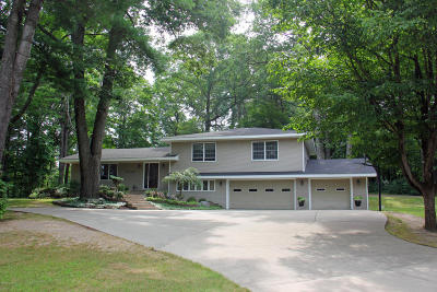 Big Rapids Single Family Home For Sale: 13480 Woodland Court