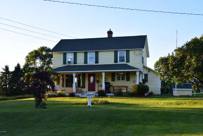 Ludington Single Family Home For Sale: 2936 W Beyer Road