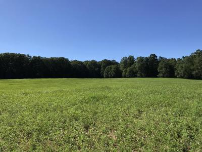 Manistee County Residential Lots & Land For Sale: Norconk Road