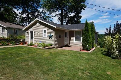 Belding Single Family Home For Sale: 12437 Cabin Dr.