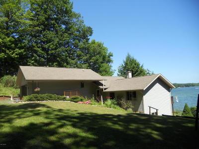 Ludington Single Family Home For Sale: 6818 W Vesper Drive