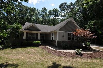 Kalamazoo Single Family Home For Sale: 1551 Forest View Drive