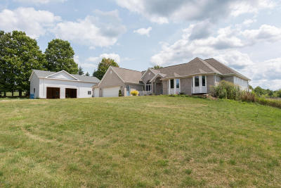 Single Family Home For Sale: 10499 Parmalee Road