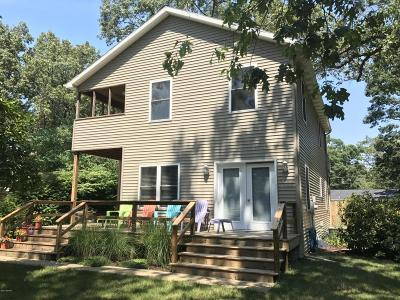 New Buffalo Single Family Home For Sale: 13187 Yunge Avenue