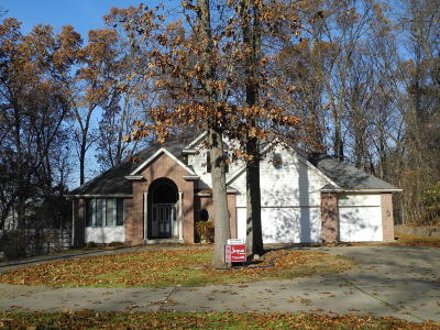 Kalamazoo Single Family Home For Sale: 6410 Trundel Lane