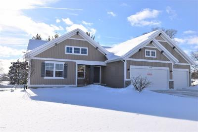 Hudsonville Single Family Home For Sale: 3848 Winsome