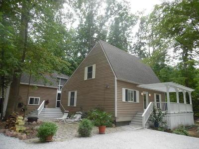 Harbert, Lakeside, New Buffalo, Sawyer, Three Oaks, Union Pier Single Family Home For Sale: 409 E Jefferson Street