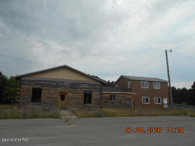 Scottville Commercial For Sale: 4101 Us-31