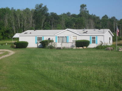 Newaygo County Single Family Home For Sale: 475 N Luce