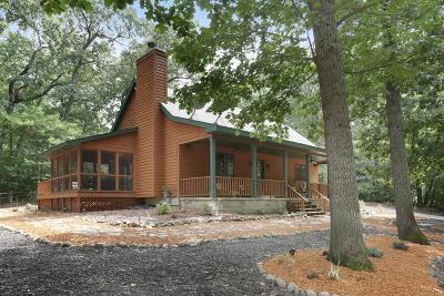 New Buffalo Single Family Home For Sale: 50231 Marjeanette Avenue