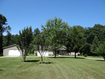 Fennville Single Family Home For Sale: 3047 Old Allegan Road
