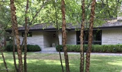 New Buffalo Single Family Home For Sale: 3892 Michiana Drive