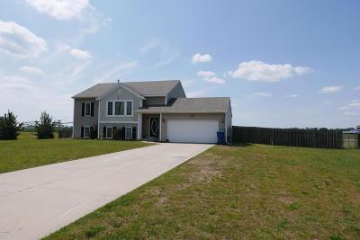 Vicksburg Single Family Home For Sale: 14580 Portage
