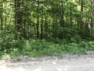 Residential Lots & Land For Sale: 7163 W Weaver Road