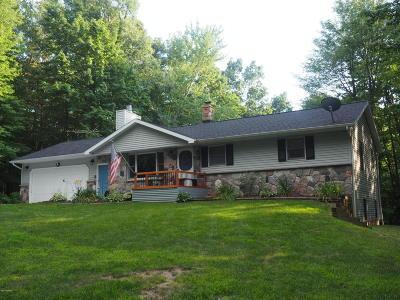 Rockford Single Family Home For Sale: 9960 7 Mile Road NE