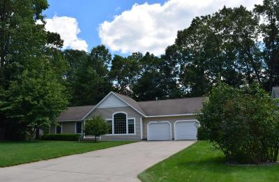 Grand Haven Single Family Home For Sale: 15308 Red Oak Street