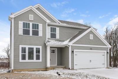 Hudsonville Single Family Home For Sale: 2831 Ardella Court
