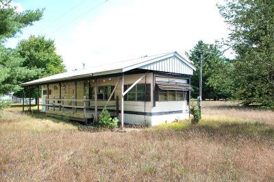 Newaygo Single Family Home For Sale: 3514 E 56th Street