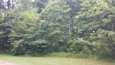 Sawyer Residential Lots & Land For Sale: A & B Crestview Dr.