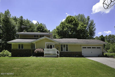Paw Paw Single Family Home For Sale: 51640 35 1/2 Street