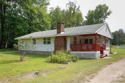 Allegan Single Family Home For Sale: 1185 28th Avenue