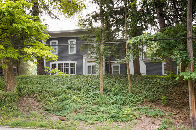 Allegan Single Family Home For Sale: 322 Grand Street