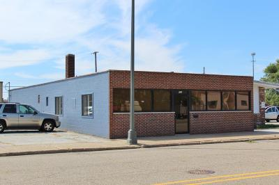 Berrien County Commercial For Sale: 254 Colfax Avenue