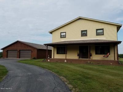 Hillsdale MI Single Family Home For Sale: $349,000