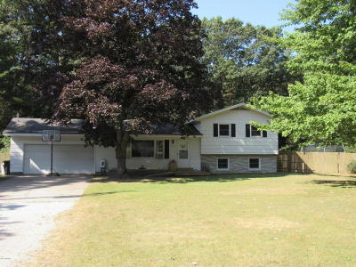 Whitehall Single Family Home For Sale: 7751 Whitehall Road