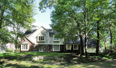 Grand Rapids Single Family Home For Sale: 1831 Hillsboro Avenue SE