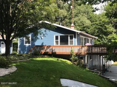 Mecosta County Single Family Home For Sale: 18534 Keckler Drive