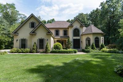 Kalamazoo Single Family Home For Sale: 9445 Himalayas Avenue