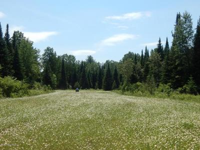 Gladwin County Residential Lots & Land For Sale: 2149 M-18