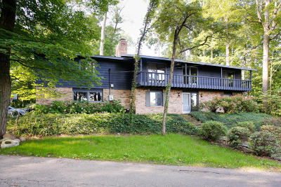 Plainwell Single Family Home For Sale: 86 S Lake Doster Drive