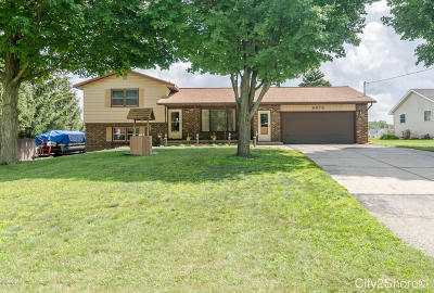 Hudsonville Single Family Home For Sale: 6878 40th Avenue