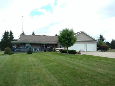 Mecosta County Single Family Home For Sale: 7334 Cessna Lane